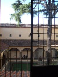 Firenze26