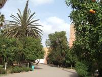 Maroc39