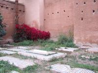 Maroc73