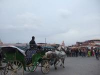 Maroc81