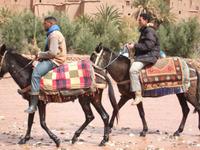 Maroc116