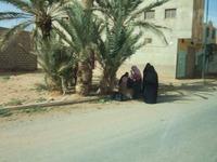 Maroc292_3
