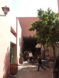 Maroc313