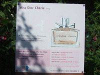 Dior5_2