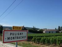 Montrachet2