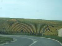 Reims87
