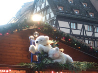Strasbourg25