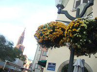 Strasbourg6