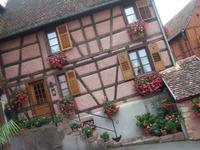 Alsace53