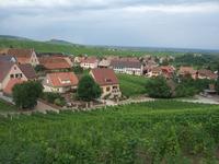 Alsace54