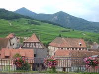 Alsace61