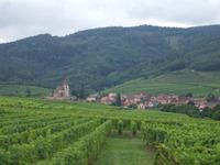 Alsace66