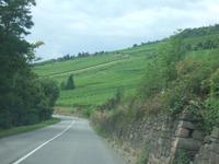 Alsace7