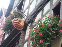 Alsace108_2