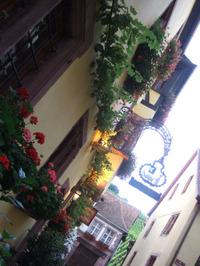 Alsace109