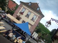 Alsace83
