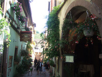 Alsace176_2