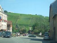 Alsace178