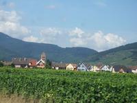 Alsace200