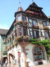 Alsace243