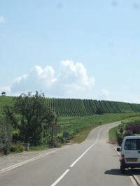Alsace27