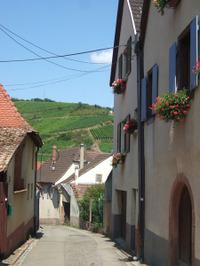 Alsace4_2