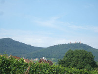 Alsace129