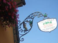 Alsace131
