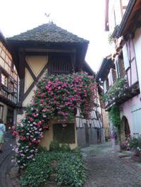 Alsace136