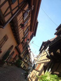 Alsace138