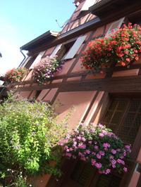 Alsace139