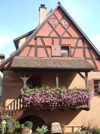 Alsace143_3