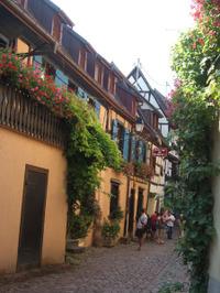 Alsace184