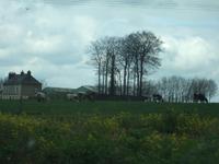 Normandie128