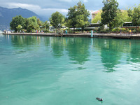 Annecy13